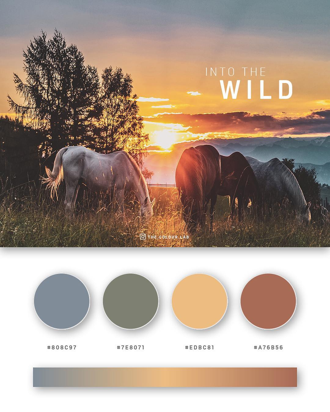 Blue, green, yellow, brown color palettes, schemes & combinations