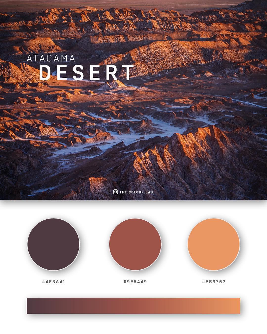 Brown, orange color palettes, schemes & combinations