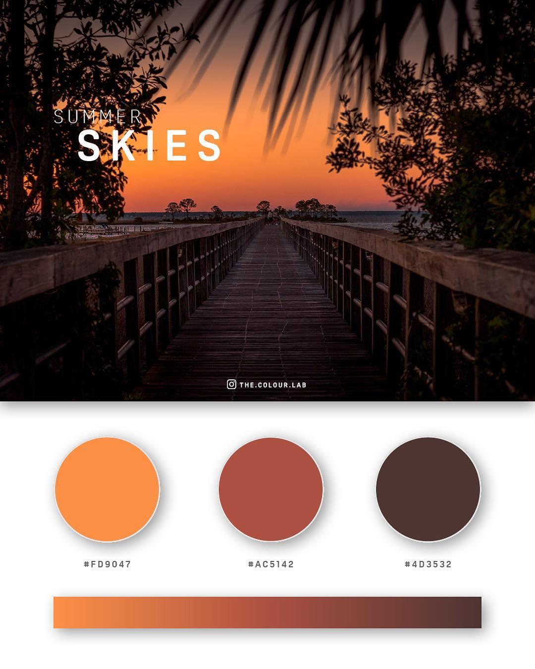 Orange color palettes, schemes & combinations