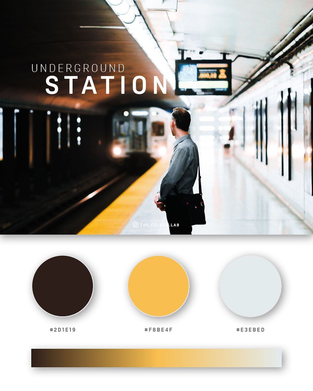 Black, yellow color palettes, schemes & combinations