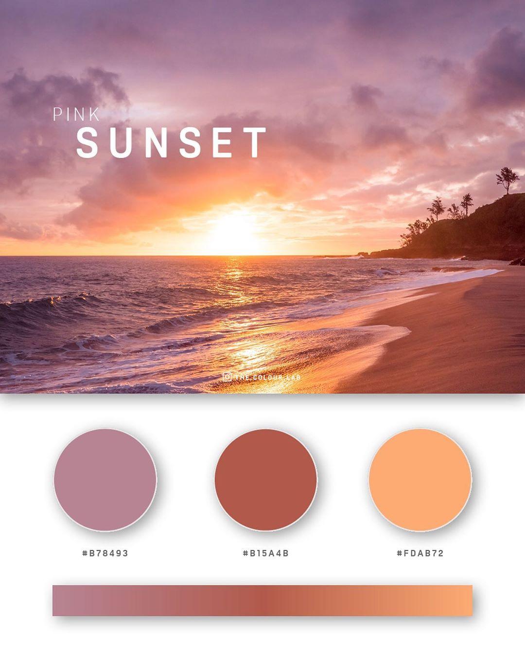 Pink, orange color palettes, schemes & combinations