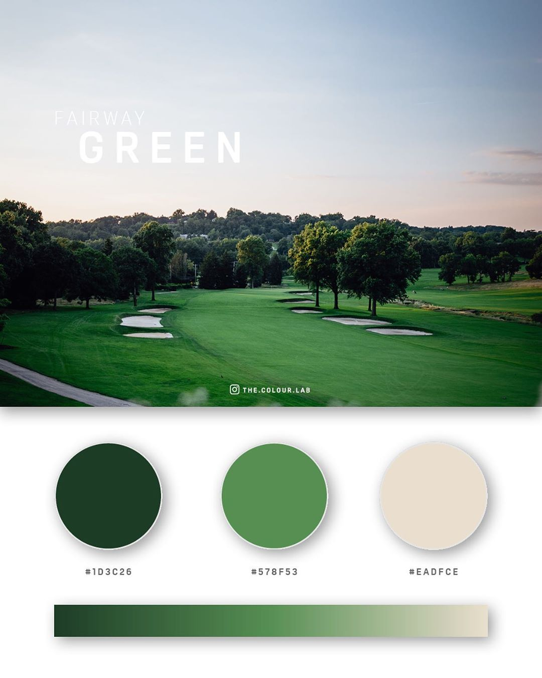 Green color palettes, schemes & combinations