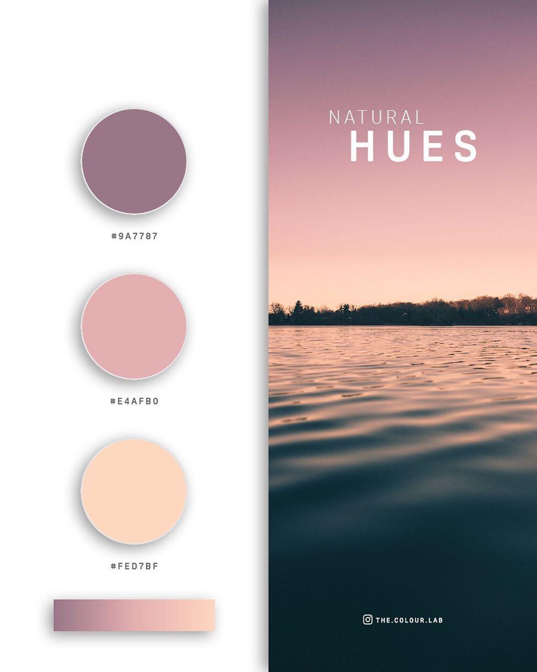 Pink, purple color palettes, schemes & combinations