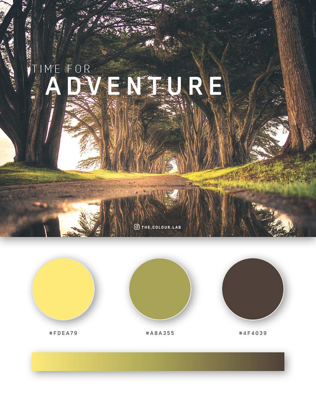 Yellow, green, brown color palettes, schemes & combinations