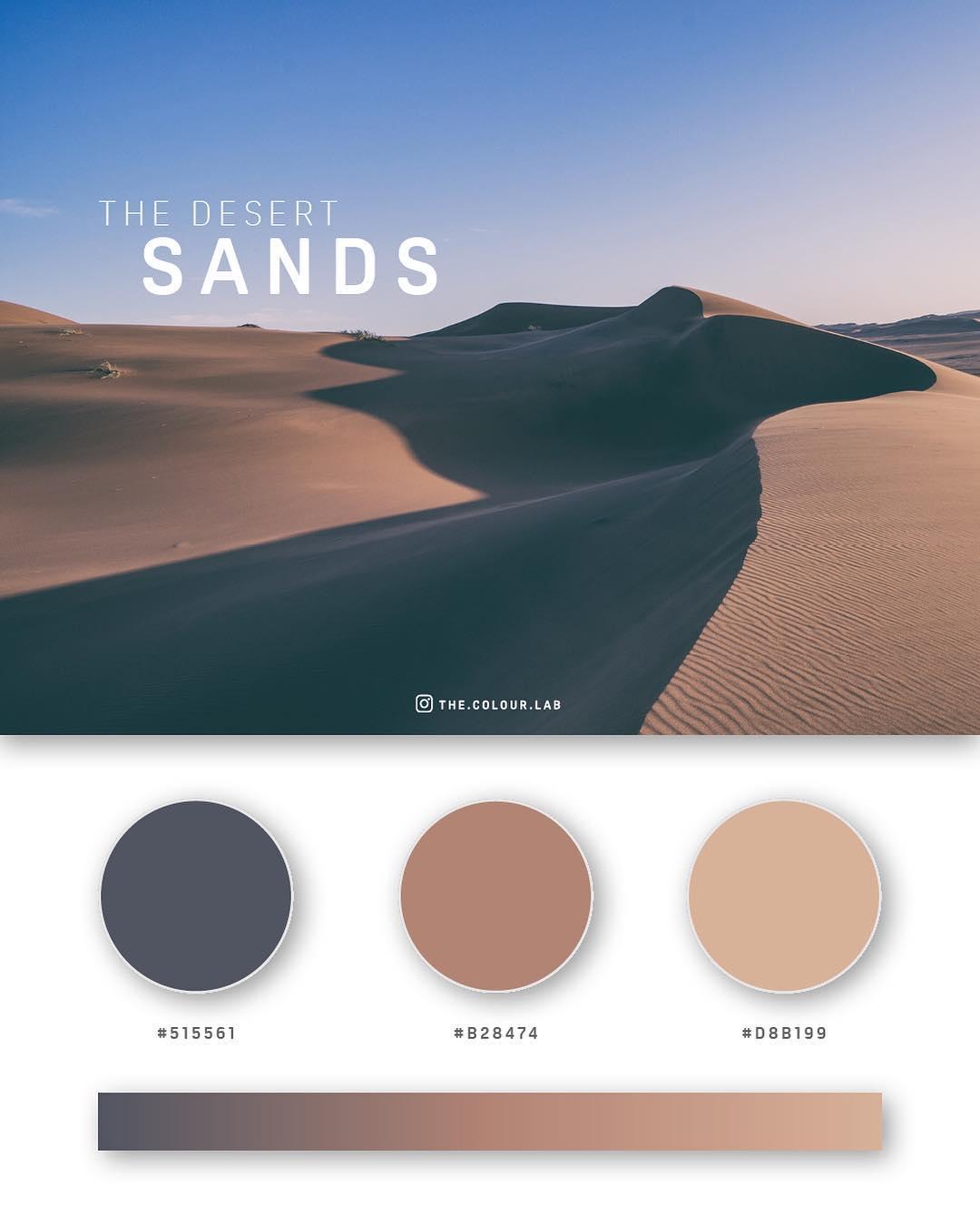 Brown color palettes, schemes & combinations