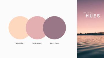 color-palettes-schemes-combos-inspiration