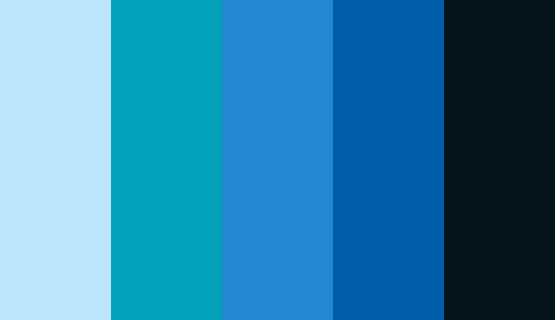 Logo color combinations - Blue and black