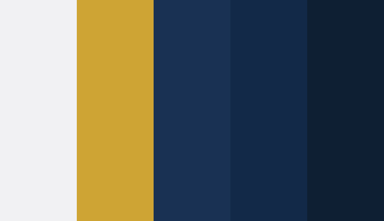 Logo color combinations - Navy, white, and yellow