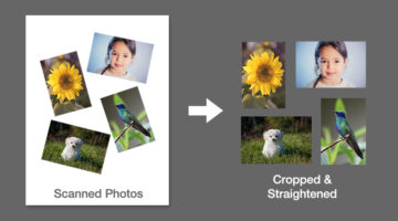 photoshop-crop-and-straighten-photos