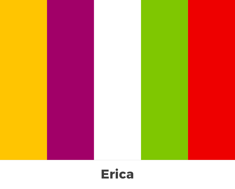Create color palette from the letters of your name - Erica