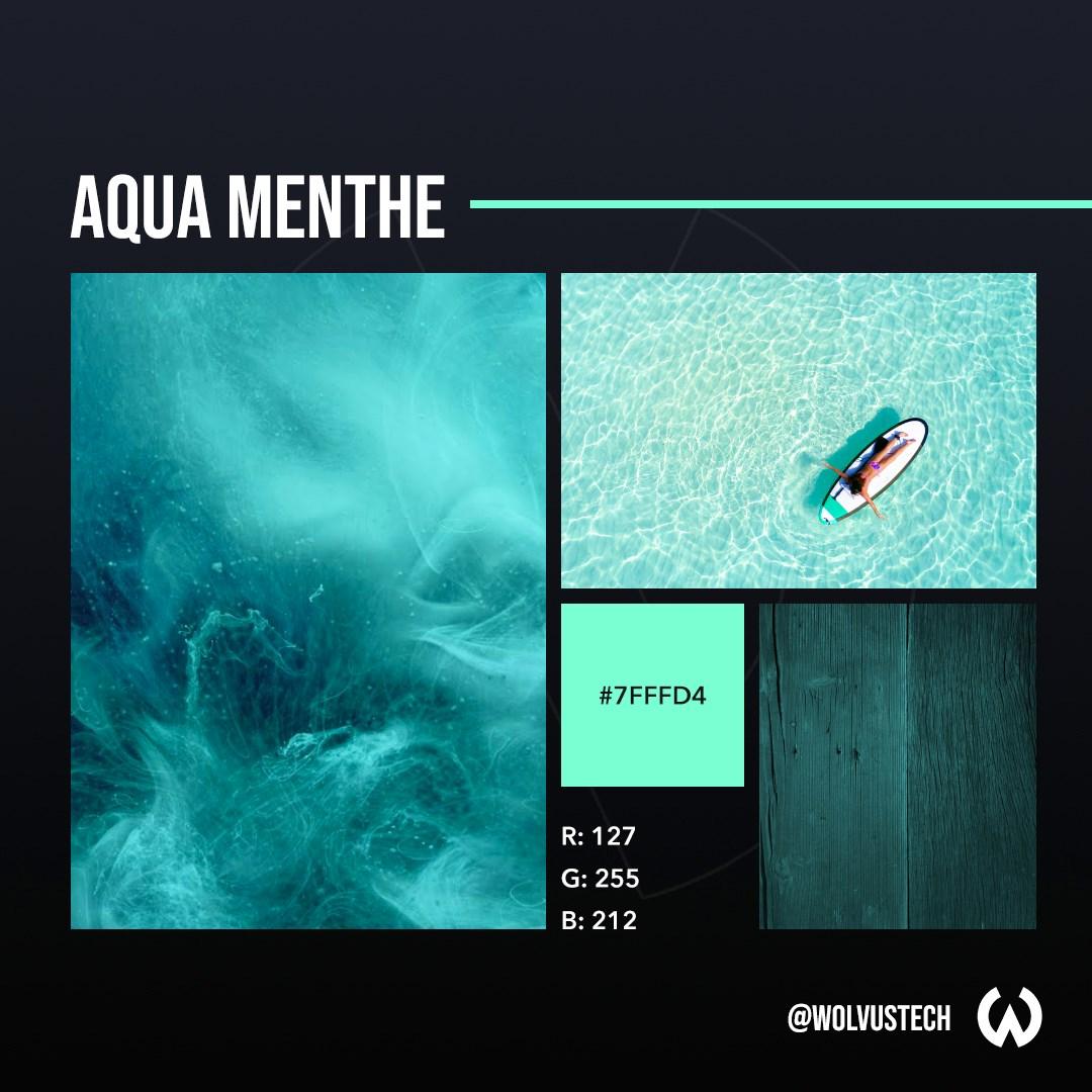 World's Most Popular Colors For 2020 - Aqua Menthe