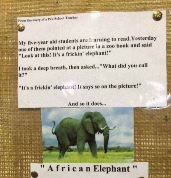 Funny Letter-Spacing & Kerning Fails - African Elephant