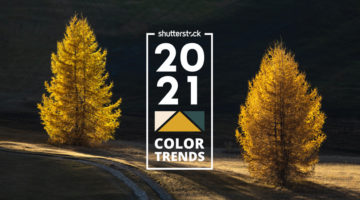 worlds-most-popular-color-trends-2021