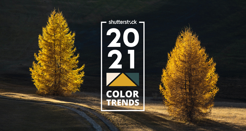Shutterstock 2021 Color Trends