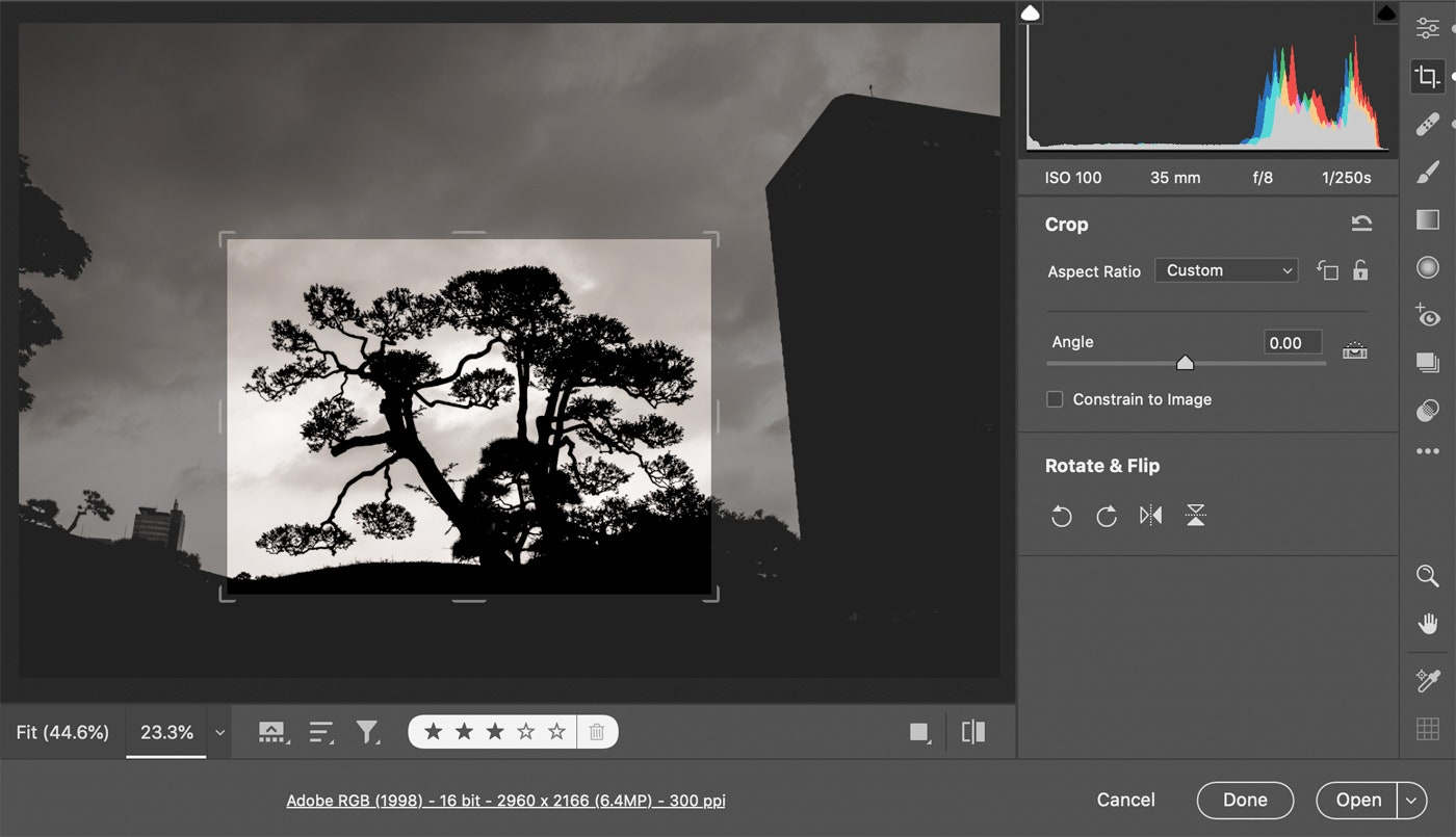 Adobe Super Resolution can turn low-res images to high-res (8a)
